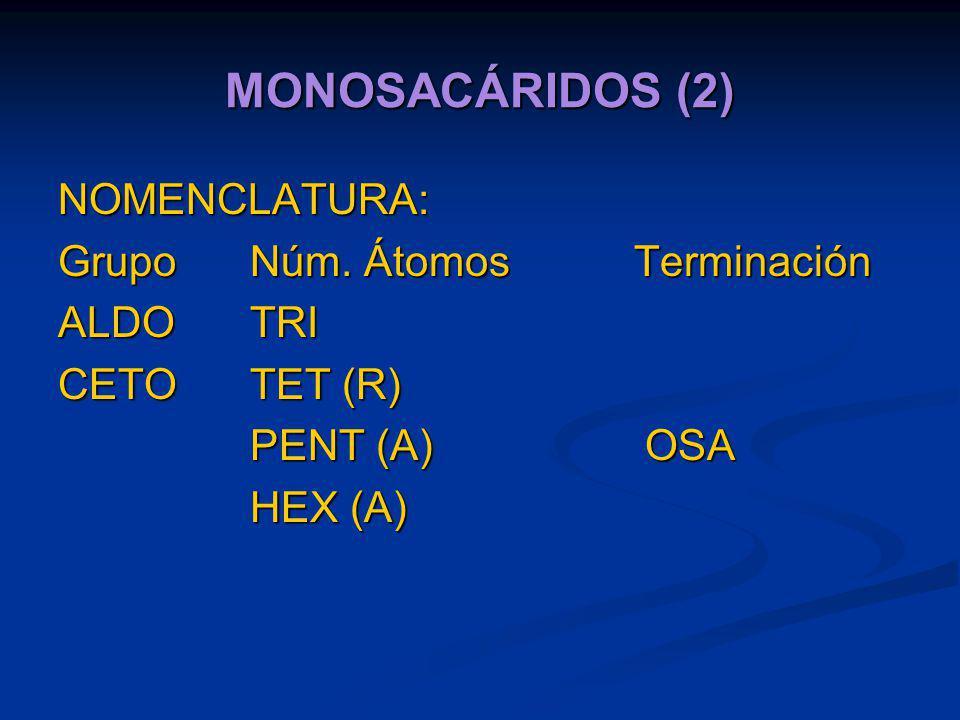 MONOSACÁRIDOS (2) NOMENCLATURA: Grupo Núm. Átomos Terminación ALDO TRI
