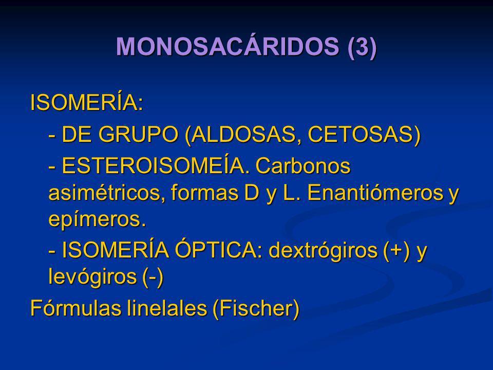 MONOSACÁRIDOS (3) ISOMERÍA: - DE GRUPO (ALDOSAS, CETOSAS)