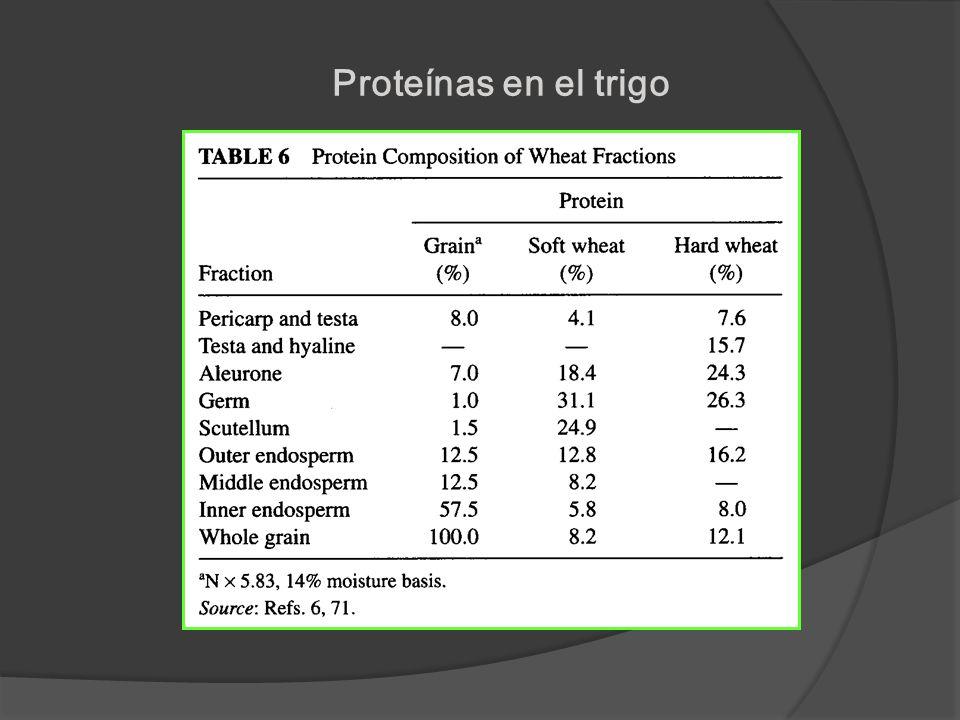Proteínas en el trigo