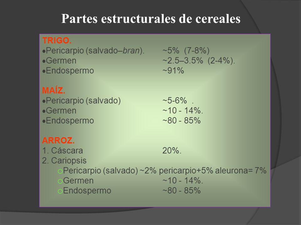 Partes estructurales de cereales