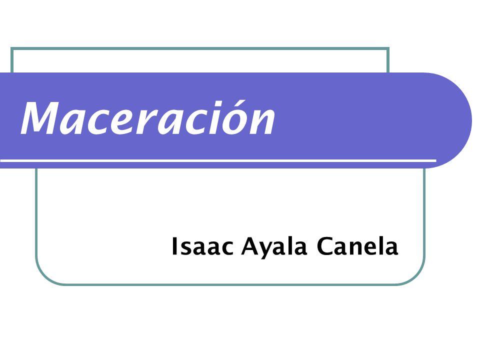 Maceración Isaac Ayala Canela