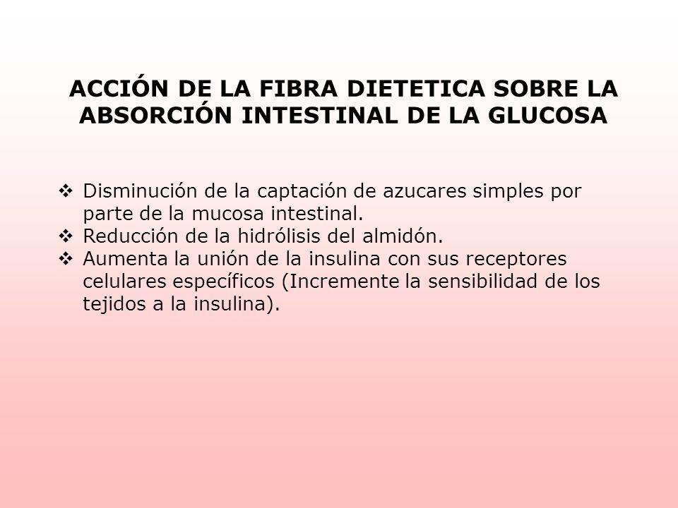 ACCIÓN DE LA FIBRA DIETETICA SOBRE LA ABSORCIÓN INTESTINAL DE LA GLUCOSA