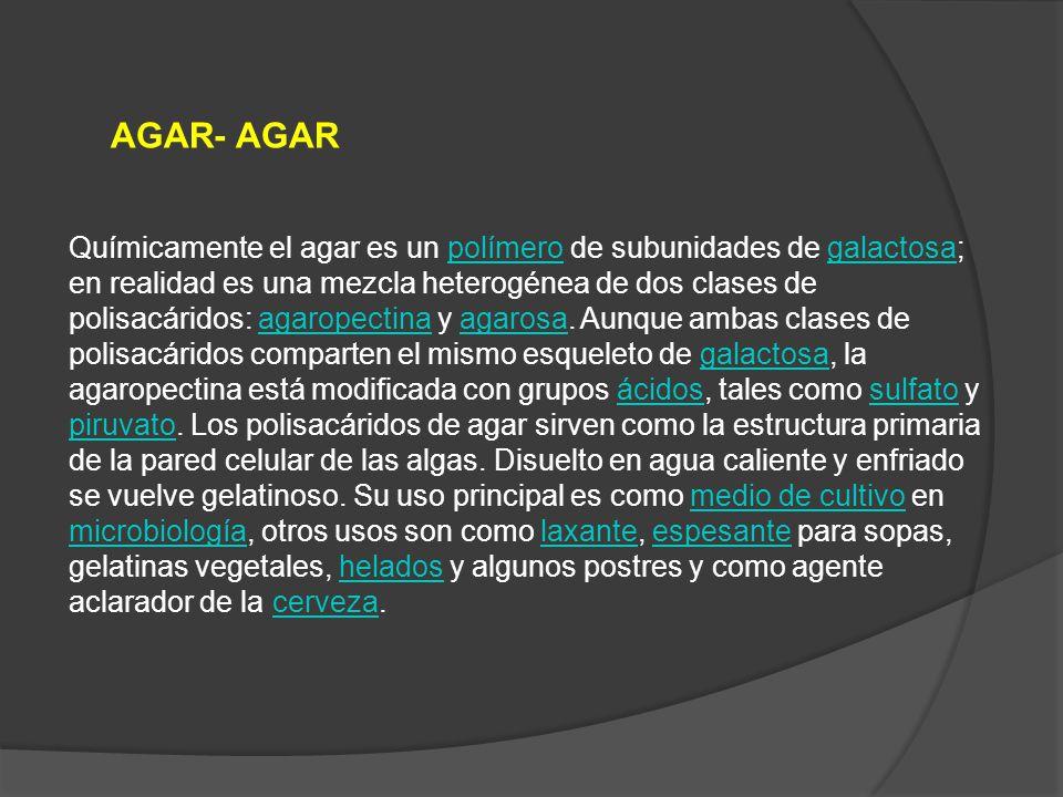 AGAR- AGAR