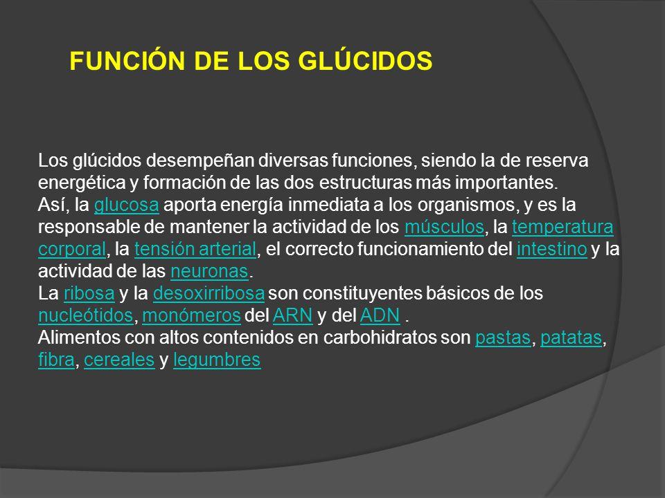 FUNCIÓN DE LOS GLÚCIDOS