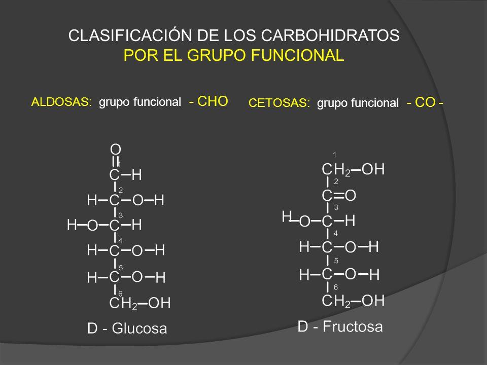 CLASIFICACIÓN DE LOS CARBOHIDRATOS