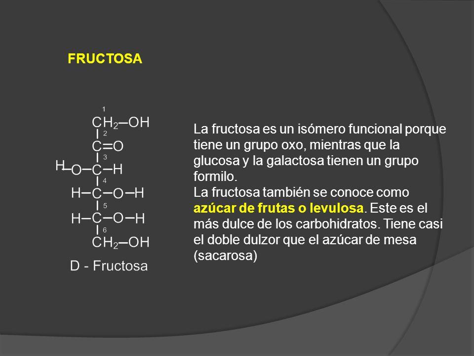 FRUCTOSA La fructosa es un isómero funcional porque tiene un grupo oxo, mientras que la glucosa y la galactosa tienen un grupo formilo.