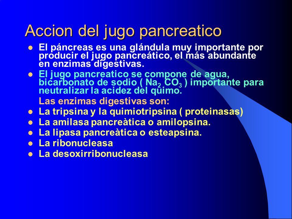 Accion del jugo pancreatico