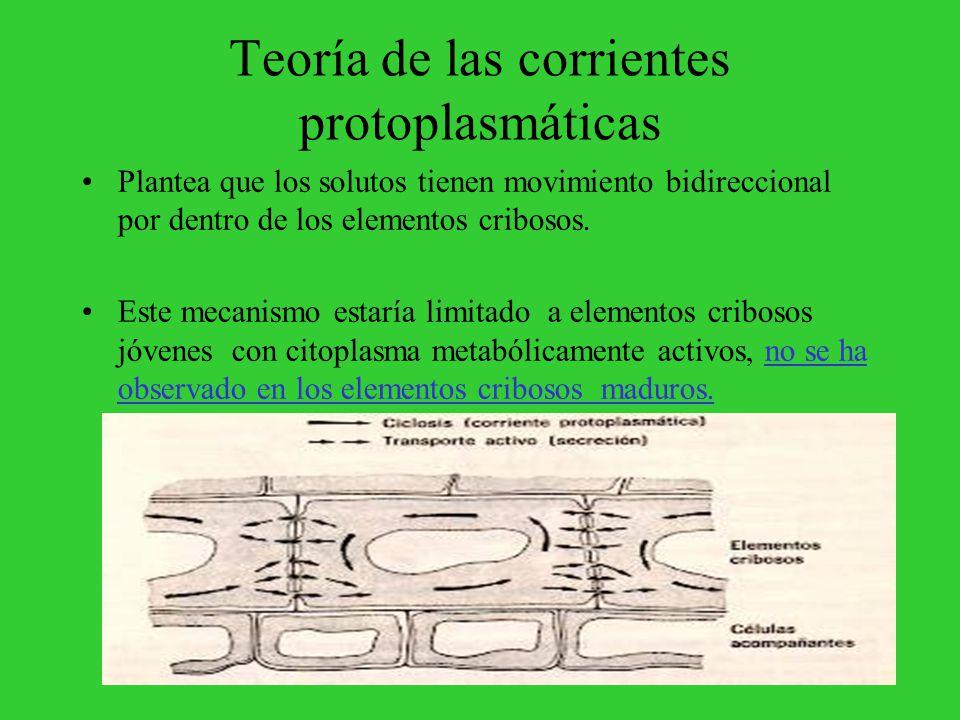 Teoría de las corrientes protoplasmáticas