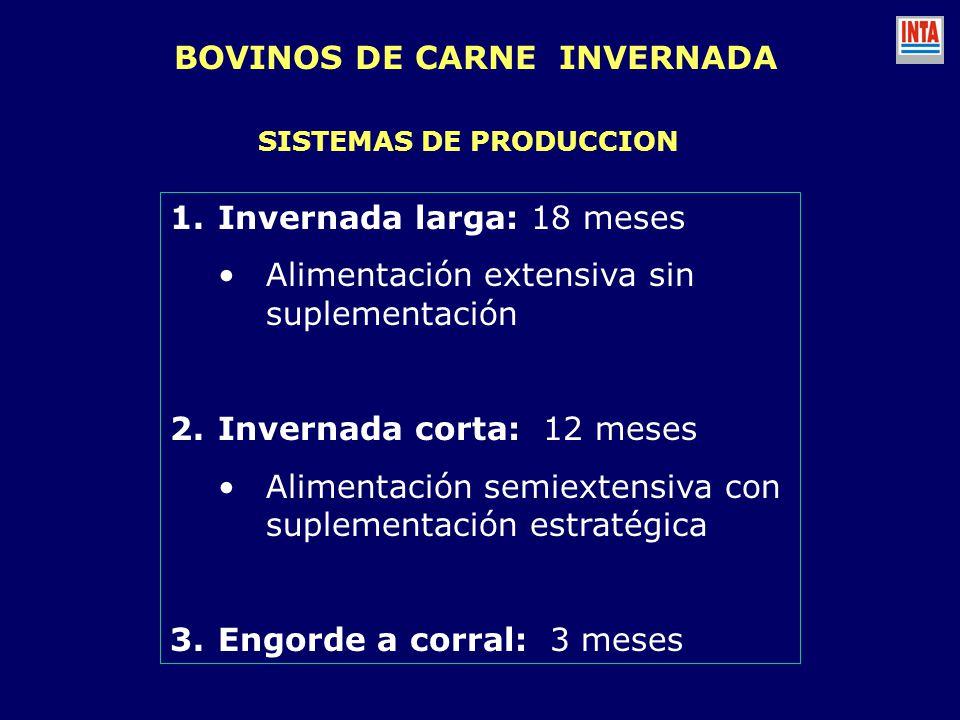 BOVINOS DE CARNE INVERNADA SISTEMAS DE PRODUCCION