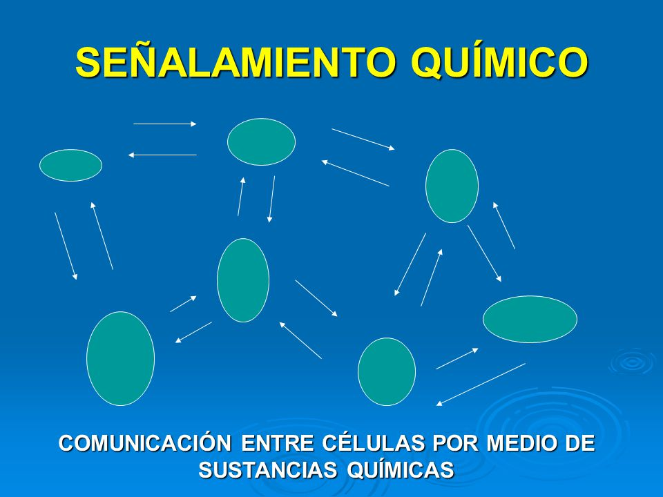 COMUNICACIÓN ENTRE CÉLULAS POR MEDIO DE SUSTANCIAS QUÍMICAS