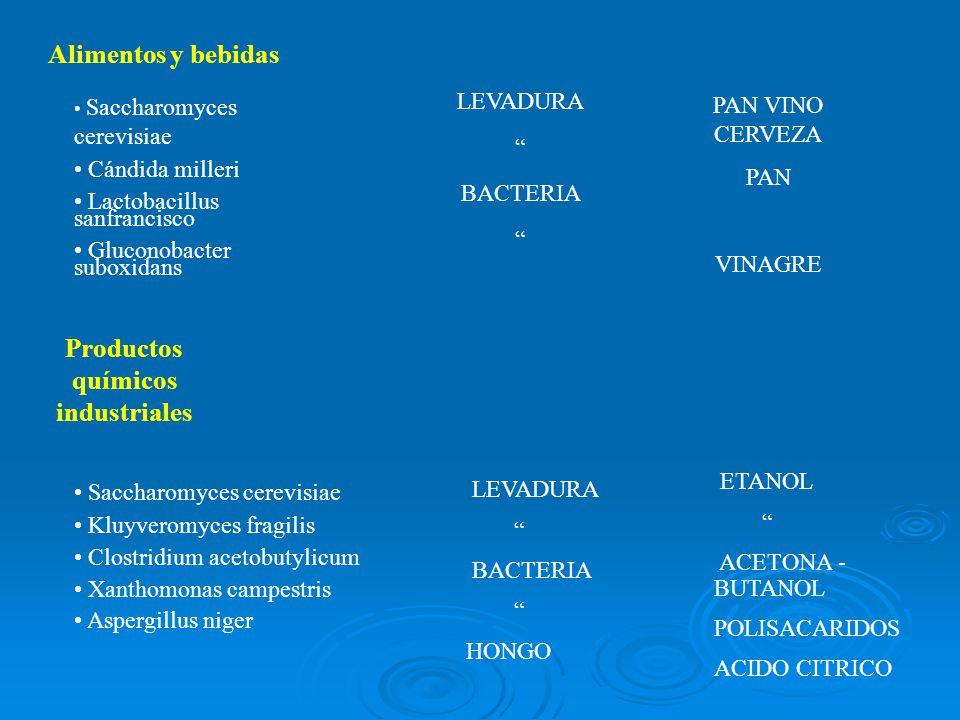 Productos químicos industriales