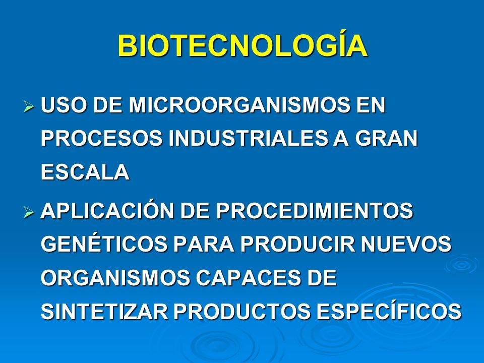 BIOTECNOLOGÍA USO DE MICROORGANISMOS EN PROCESOS INDUSTRIALES A GRAN ESCALA.