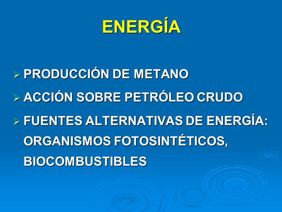 ENERGÍA PRODUCCIÓN DE METANO ACCIÓN SOBRE PETRÓLEO CRUDO