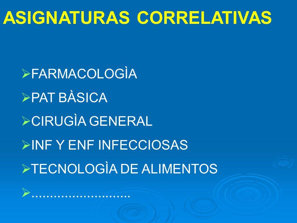 ASIGNATURAS CORRELATIVAS