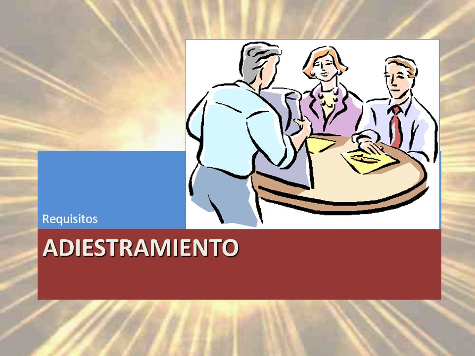 Requisitos Adiestramiento