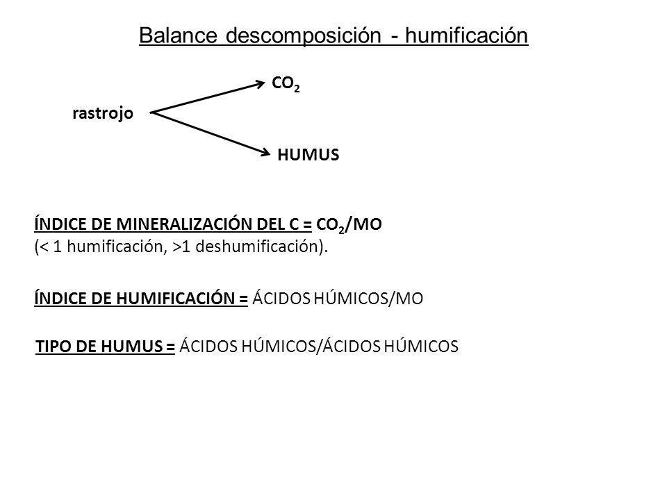 Balance descomposición - humificación