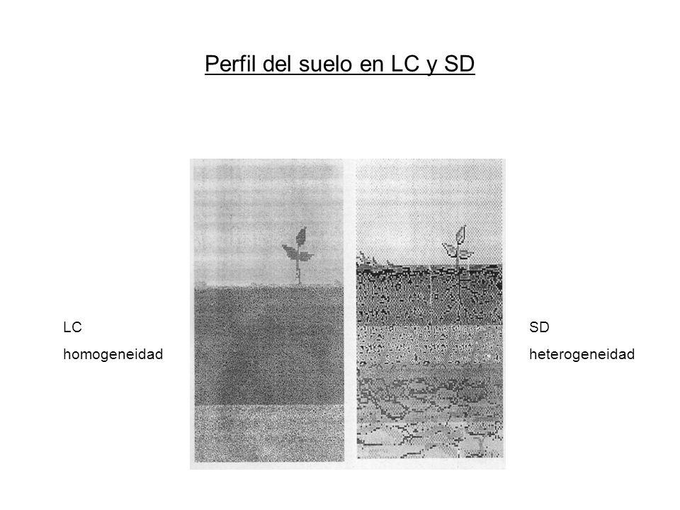 Perfil del suelo en LC y SD