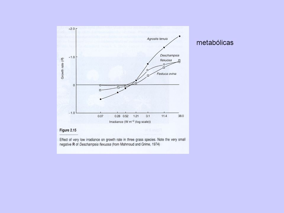 metabólicas
