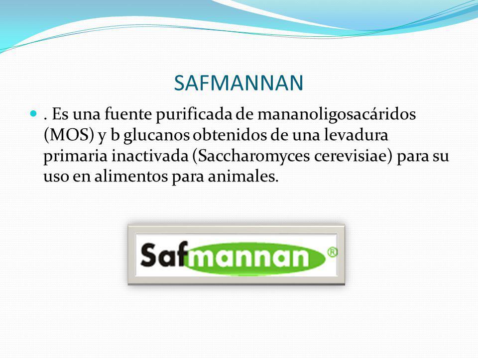 SAFMANNAN