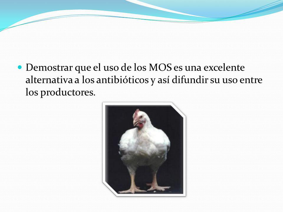 Demostrar que el uso de los MOS es una excelente alternativa a los antibióticos y así difundir su uso entre los productores.