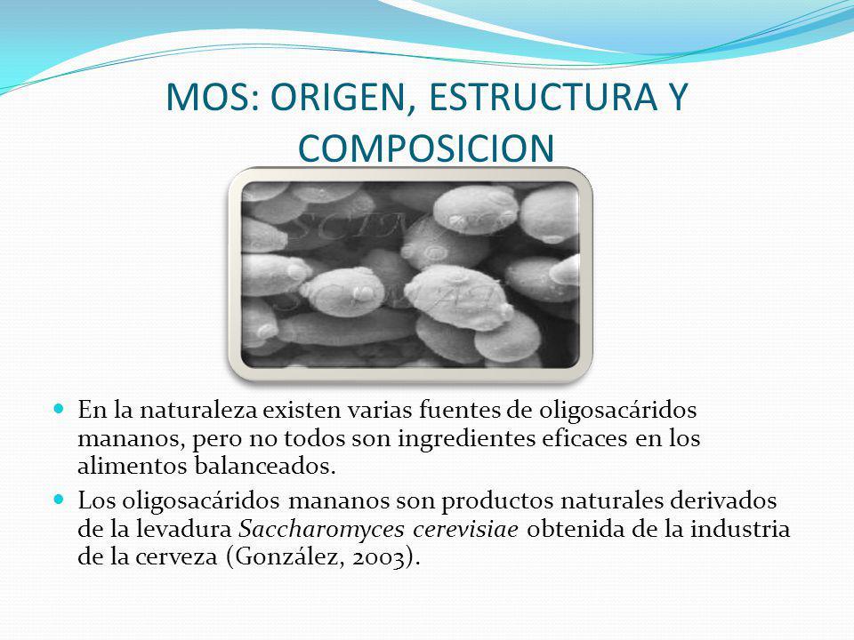 MOS: ORIGEN, ESTRUCTURA Y COMPOSICION