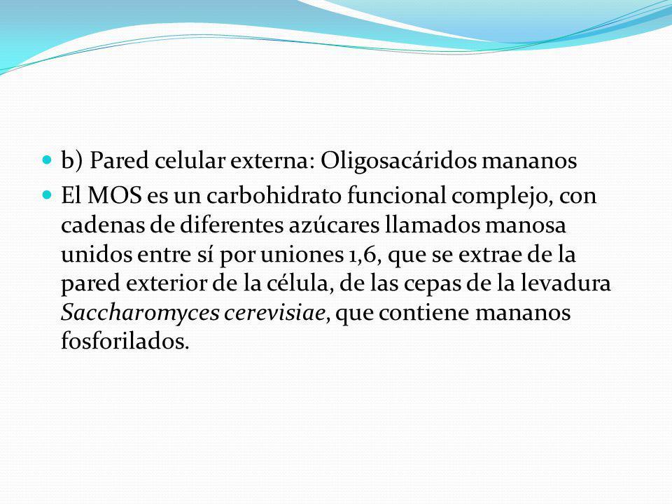 b) Pared celular externa: Oligosacáridos mananos