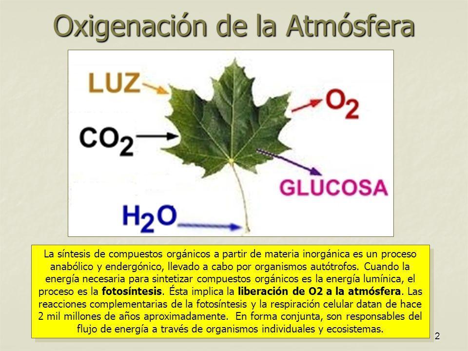 Oxigenación de la Atmósfera