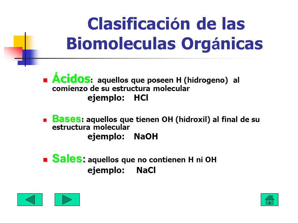 Clasificación de las Biomoleculas Orgánicas