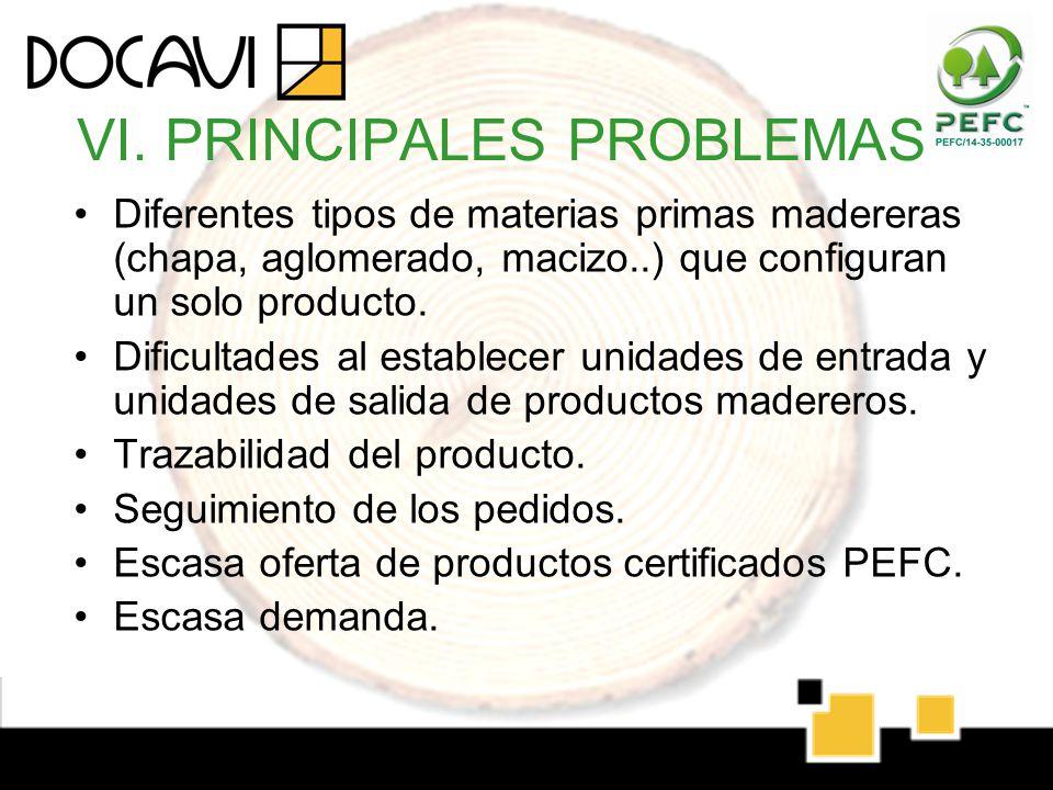 VI. PRINCIPALES PROBLEMAS