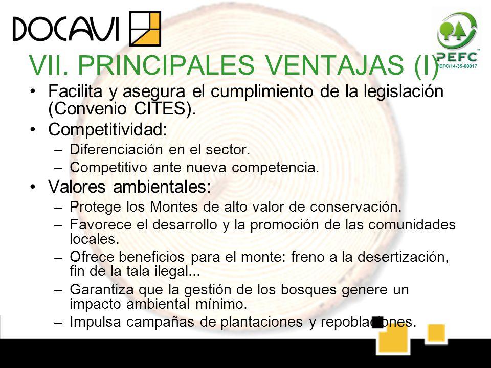VII. PRINCIPALES VENTAJAS (I)