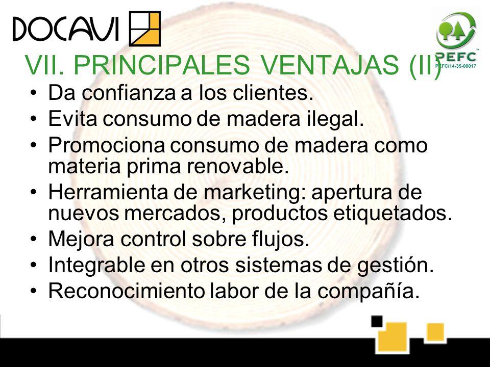 VII. PRINCIPALES VENTAJAS (II)