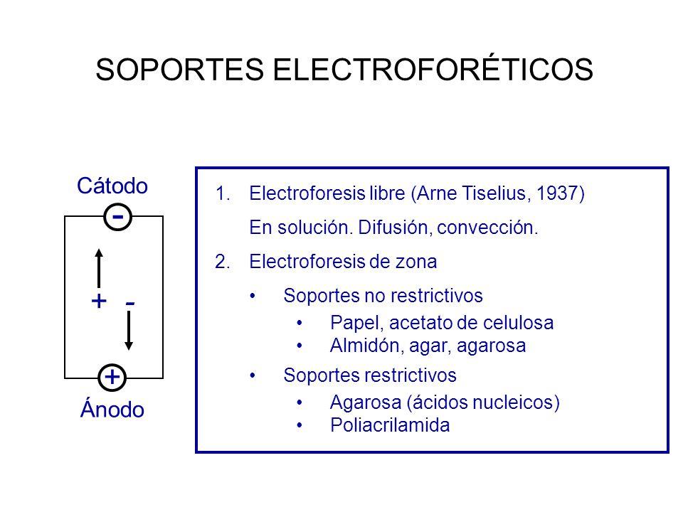 SOPORTES ELECTROFORÉTICOS