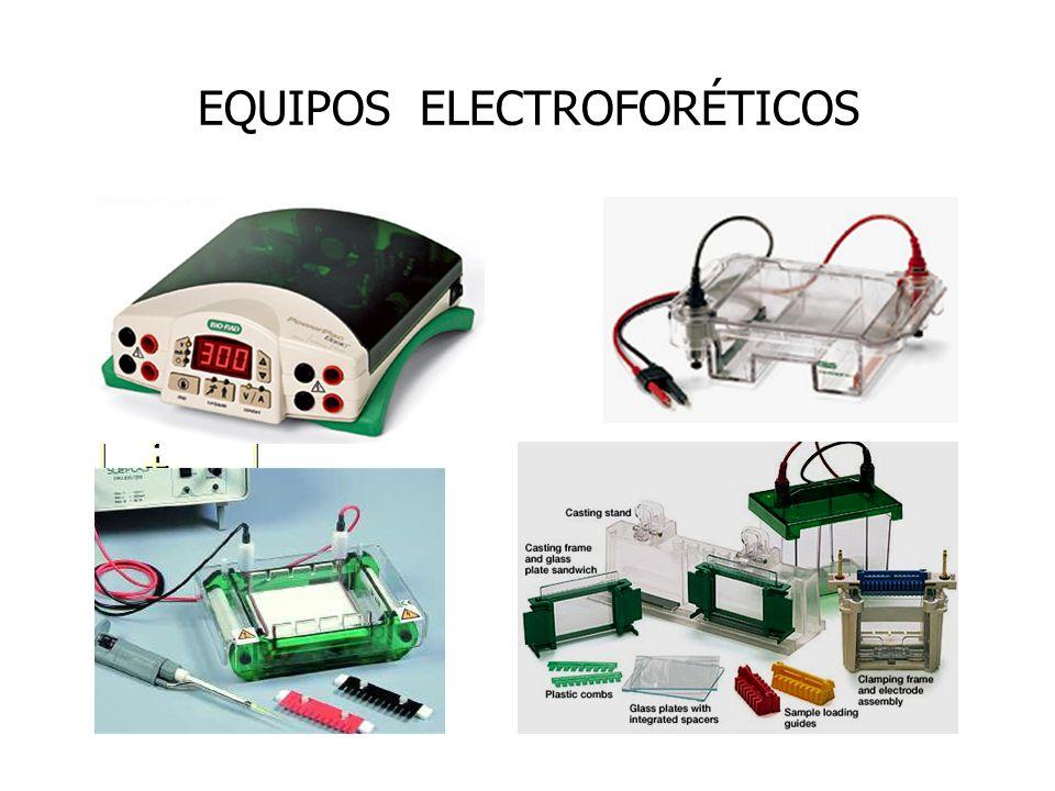 EQUIPOS ELECTROFORÉTICOS