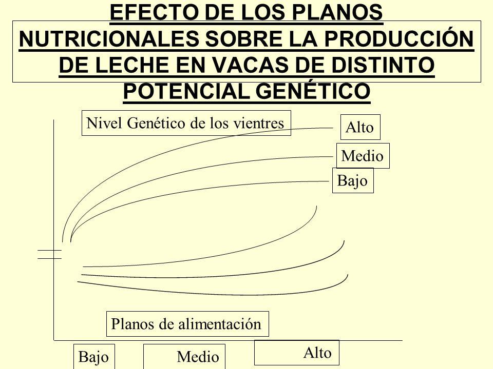 EFECTO DE LOS PLANOS NUTRICIONALES SOBRE LA PRODUCCIÓN DE LECHE EN VACAS DE DISTINTO POTENCIAL GENÉTICO