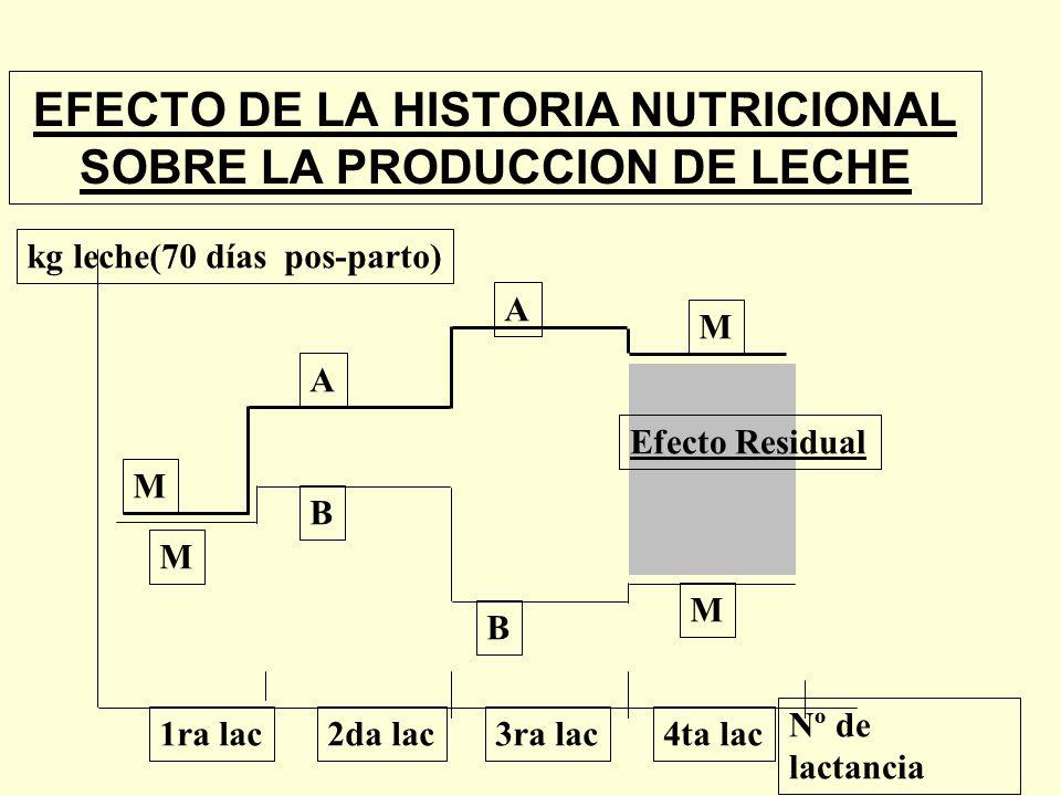 EFECTO DE LA HISTORIA NUTRICIONAL SOBRE LA PRODUCCION DE LECHE