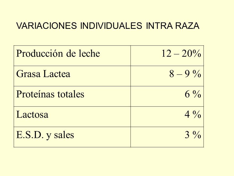 Producción de leche 12 – 20% Grasa Lactea 8 – 9 % Proteínas totales
