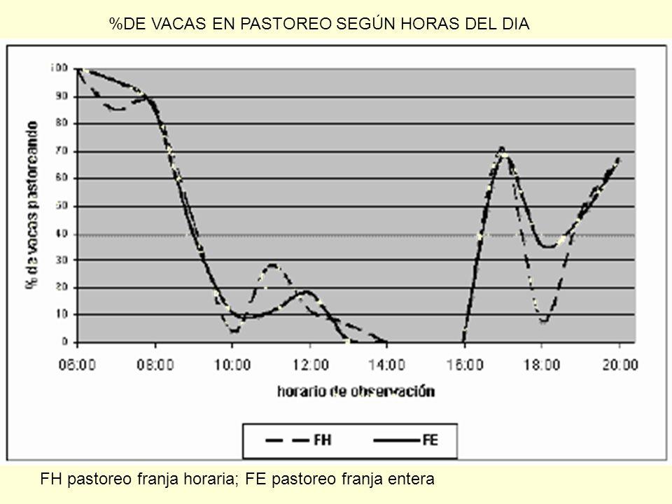 %DE VACAS EN PASTOREO SEGÚN HORAS DEL DIA