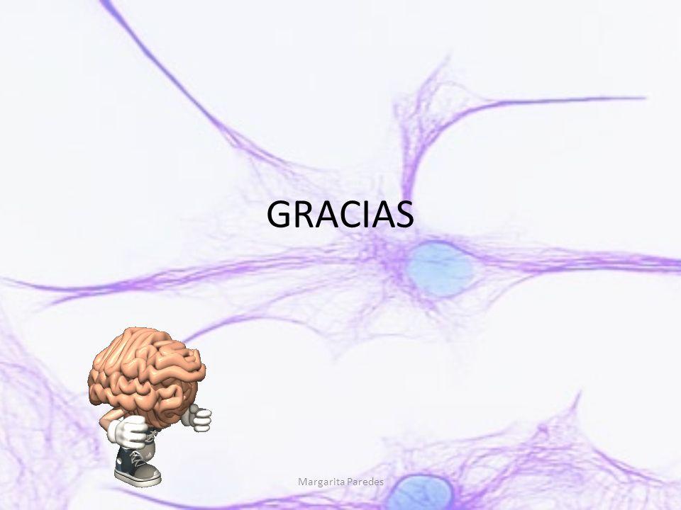 GRACIAS Margarita Paredes