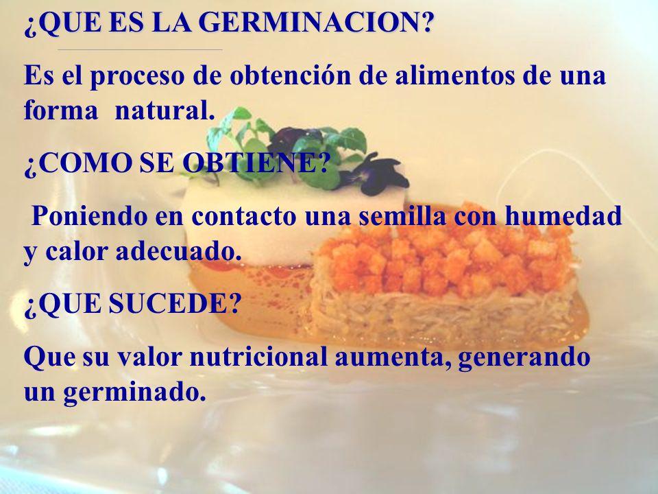 ¿QUE ES LA GERMINACION Es el proceso de obtención de alimentos de una forma natural. ¿COMO SE OBTIENE