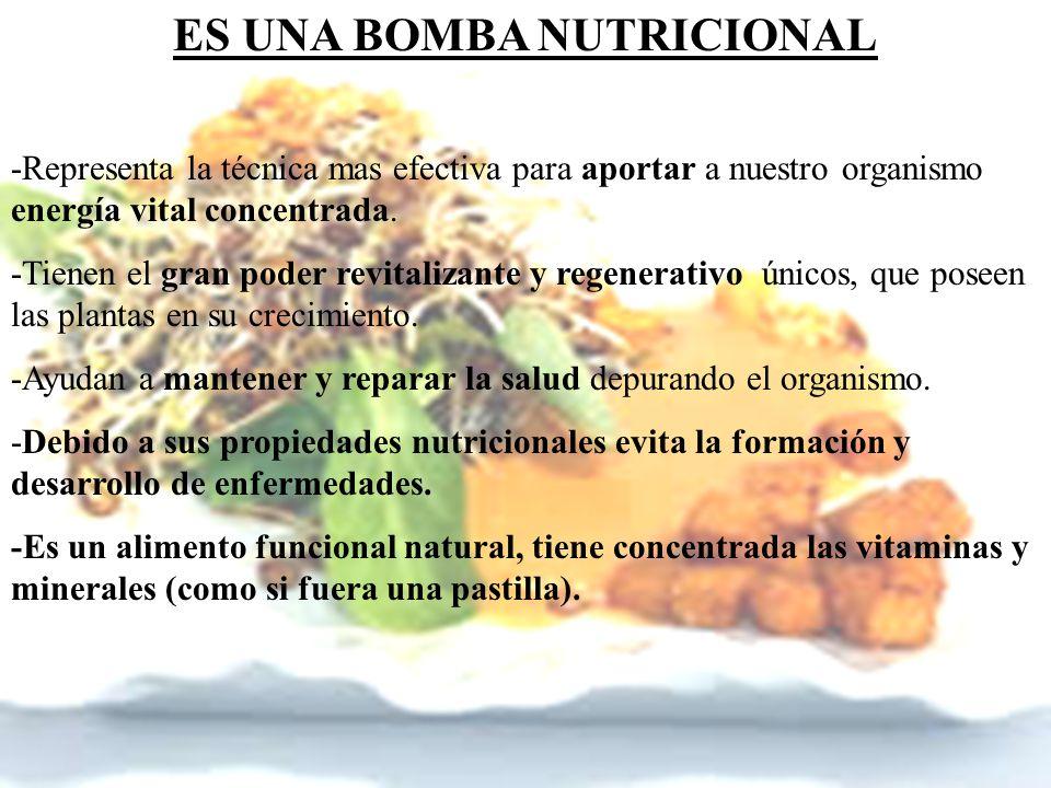 ES UNA BOMBA NUTRICIONAL
