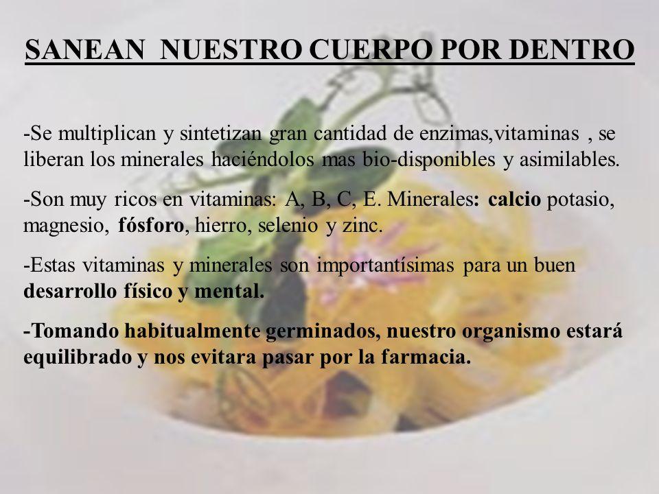 Que es la germinacion es el proceso de obtenci n de alimentos de una forma natural como se - Alimentos ricos en magnesio y zinc ...