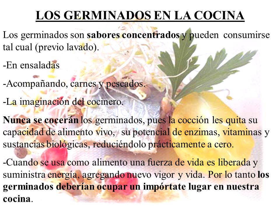 LOS GERMINADOS EN LA COCINA