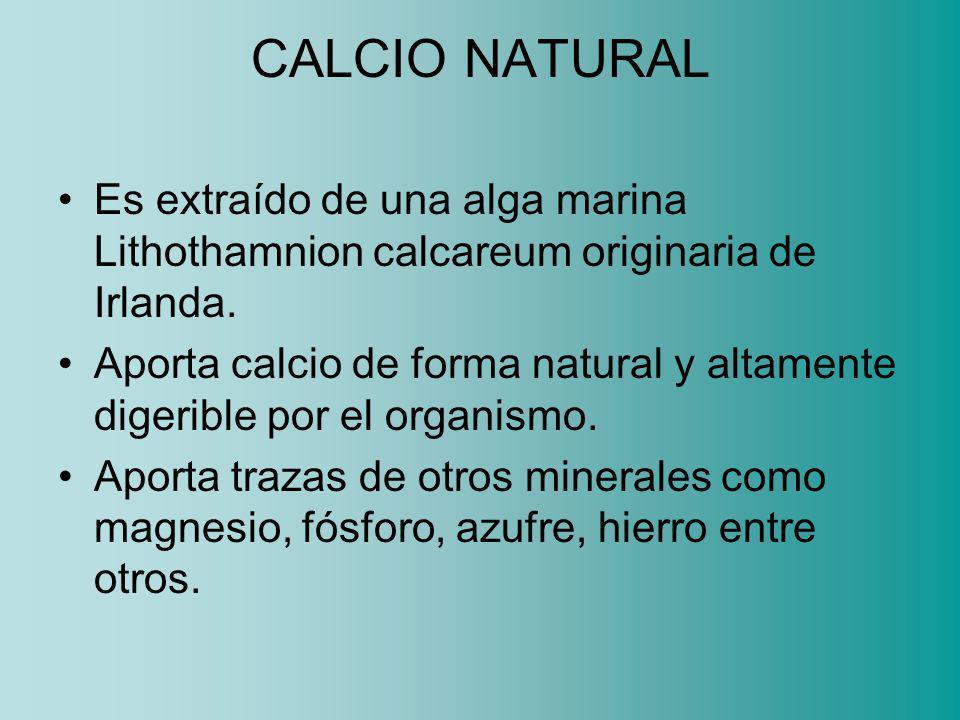CALCIO NATURAL Es extraído de una alga marina Lithothamnion calcareum originaria de Irlanda.