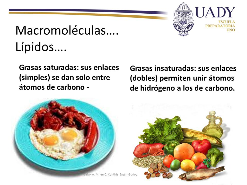Macromoléculas…. Lípidos….
