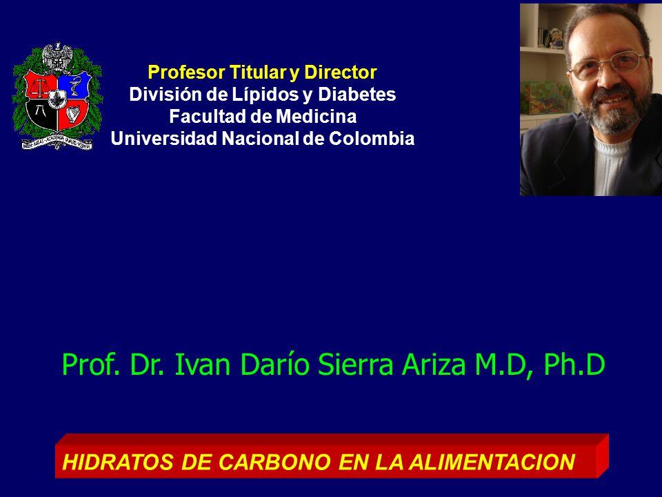 Prof. Dr. Ivan Darío Sierra Ariza M.D, Ph.D