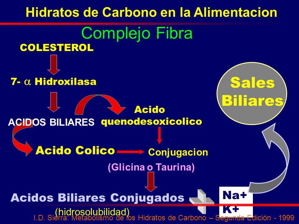 Complejo Fibra Sales Biliares Hidratos de Carbono en la Alimentacion