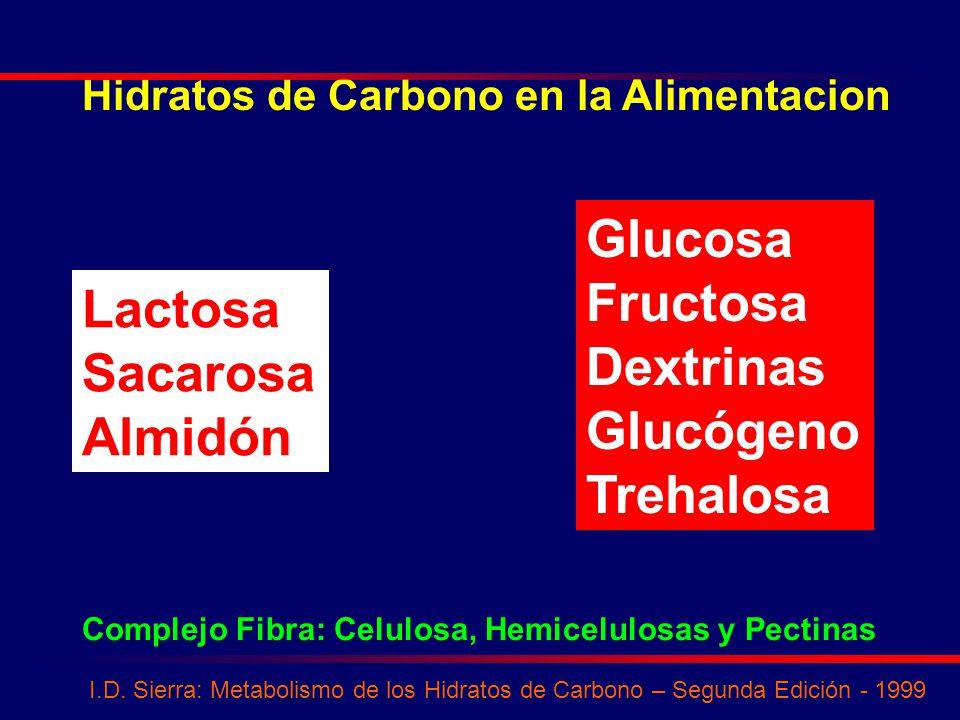 Glucosa Fructosa Dextrinas Lactosa Glucógeno Sacarosa Trehalosa