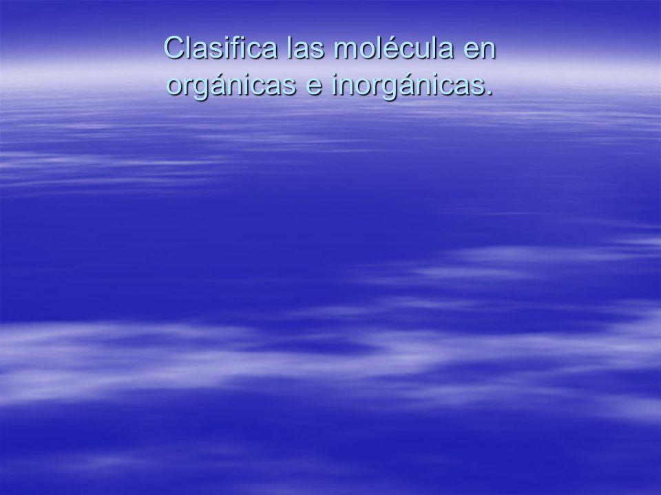 Clasifica las molécula en orgánicas e inorgánicas.