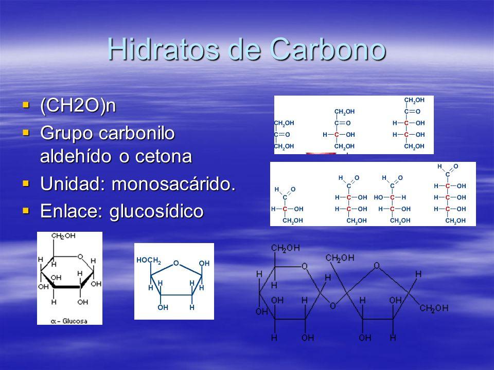 Hidratos de Carbono (CH2O)n Grupo carbonilo aldehído o cetona