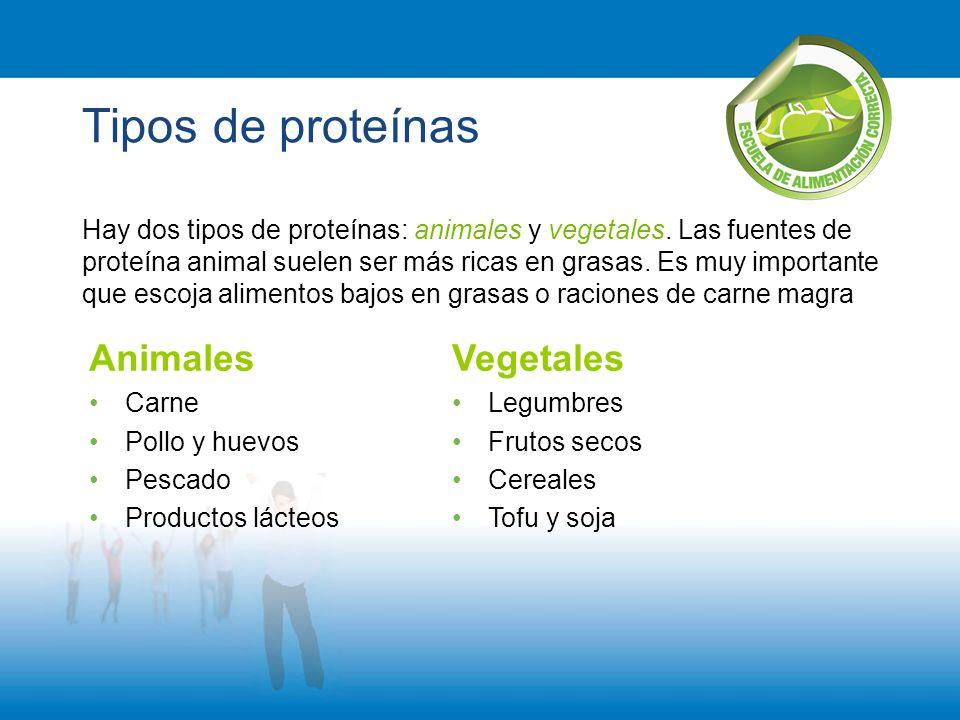 Tipos de proteínas Animales Vegetales